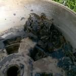 Resíduos de jabón líquido.